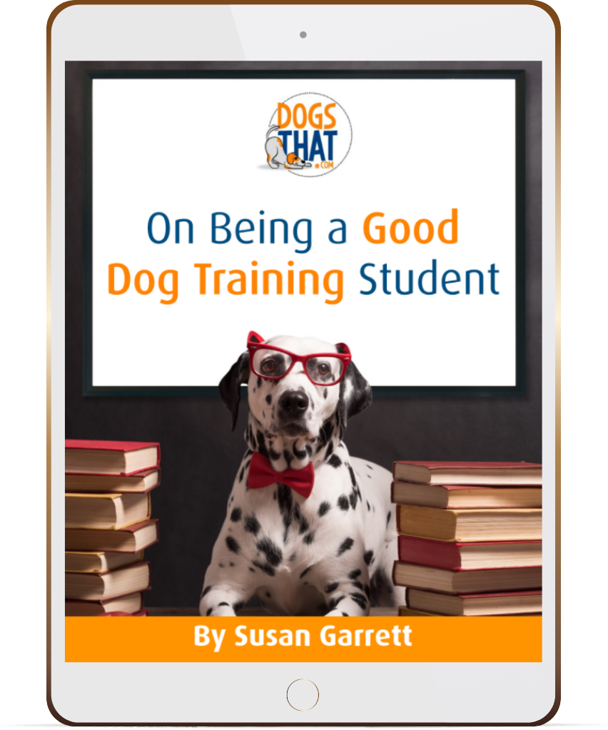 On Being a Good Dog Training Student
